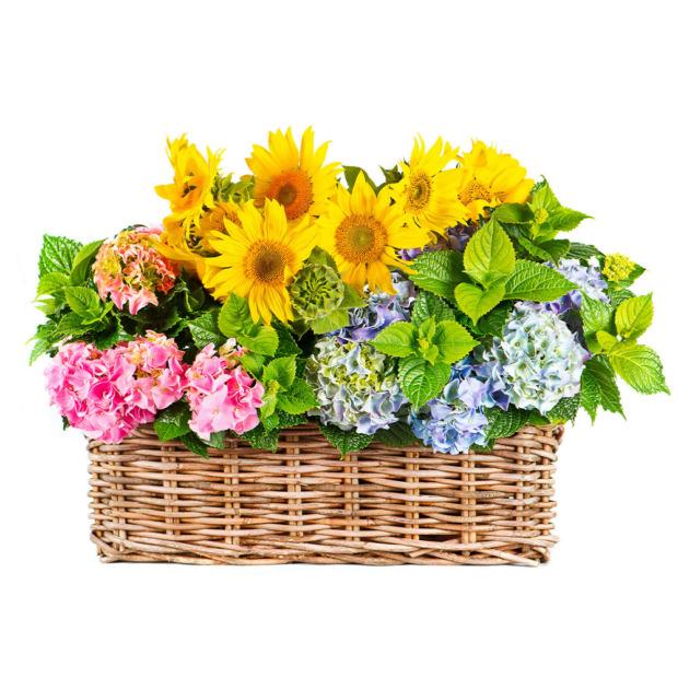"""Цветы в корзинке """"Загадка"""""""